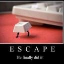 He Finally Escaped!