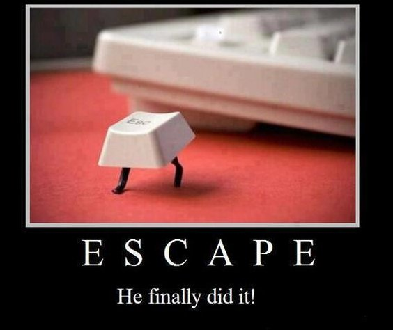 He Finally Escaped!