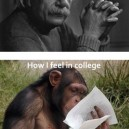 How I Feel In College