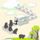 How Pandas Are Made