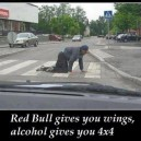 Red Bull vs. Alcohol