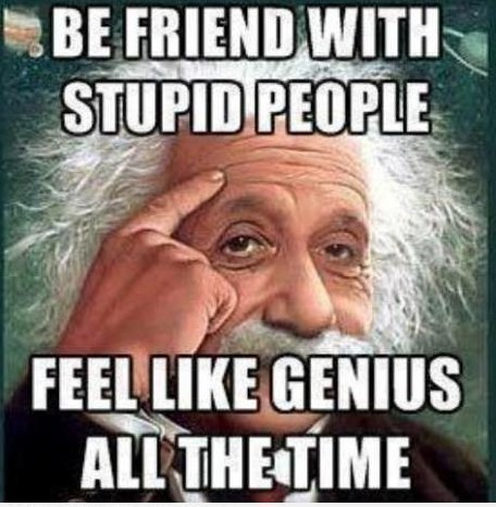 Stupid People vs. Genius