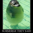 Submerge They Said…