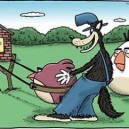 Angry Birds And The Wolf