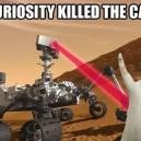 Curiosity Killed The Cat