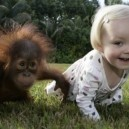 The Monkey And They Baby