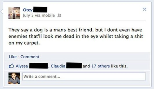 Dog Mans Best Friend?