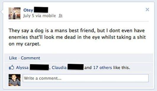 Dog Mans Best Friend?