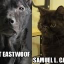 Great Actors as Animals