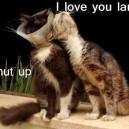 I Love You Lamp!