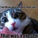 It Was a Present!