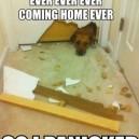I Paniced!