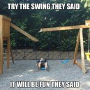 Try The Swing They Said…