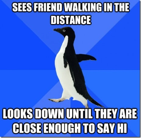 Socially awkward penguin strikes again