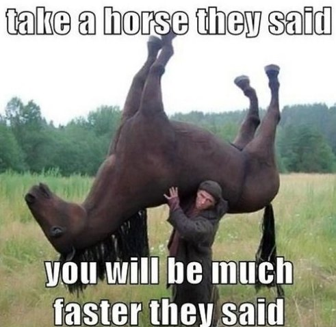 Take a Horse They Said…