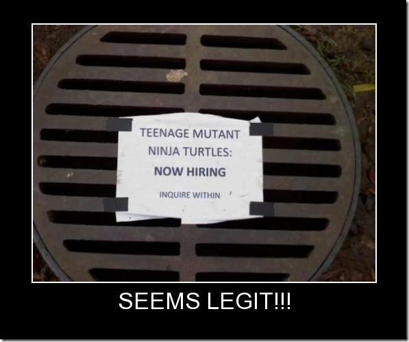 TMNT Now Hiring!