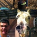 Horse Face – Because Duck Face Got Old