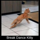 Break Dance Kitty