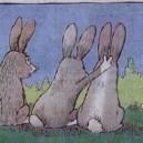 The Idiot Bunny