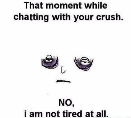 Chatting With Your Crush