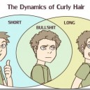 The Dynamics of Curly Hair