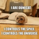 I Are Dunecat!