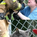 Evil Cat is Saved…
