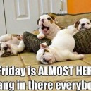 Friday Is Almost Here!