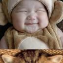 U Funny Cat!