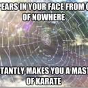 Good Guy Spider Web