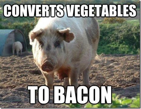 Goodguy Pig
