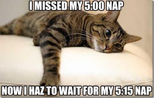 I Missed My 5:00 Nap…