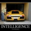 Intelligence Motivational Poster
