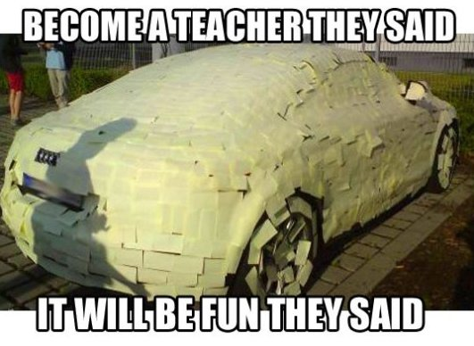 Become a Teacher They Said…