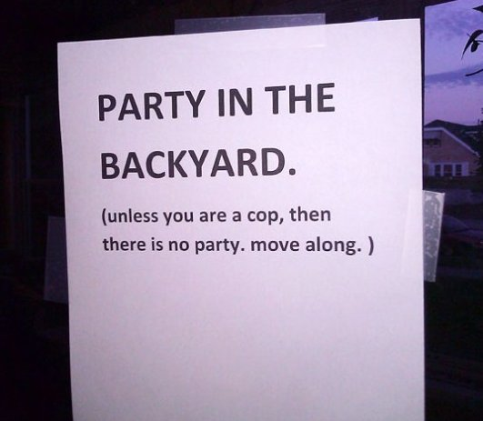 Party In The Backyard