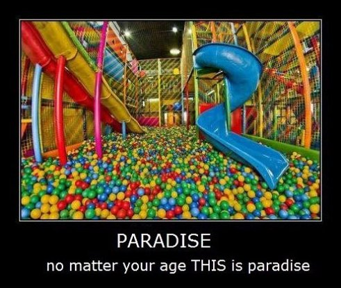 Paradise For Everyone