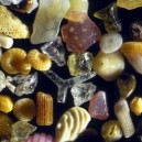 Sand Under 250x Microscope