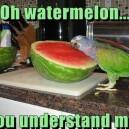 Oh Watermelon…