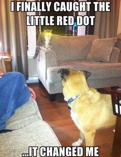 Finally Caught The Red Dot
