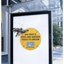Clever Ads from Science World