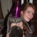 Party cat is not amused