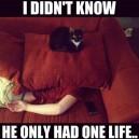 I Didn't Know…