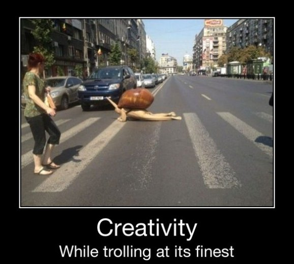 Trolling Like a Boss