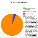 What I see on my Facebook everyday