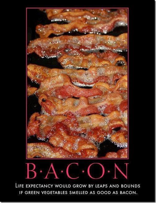 Bacon – The Essence of Life