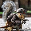 Captain Jack Squirrel