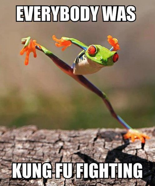 Everybody was kung fu fighting!