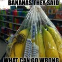 Buy Bananas They Said…