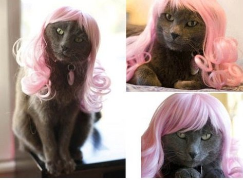Kitty Minaj