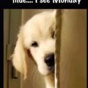 Soon Monday…